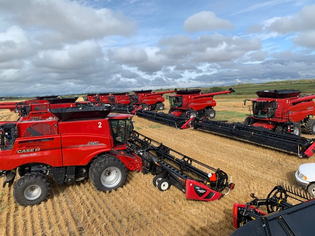 Several CASE IH 9250 AXIAL-FLOW Combine with a MACDON D140 40′ Draper Front on a grain field
