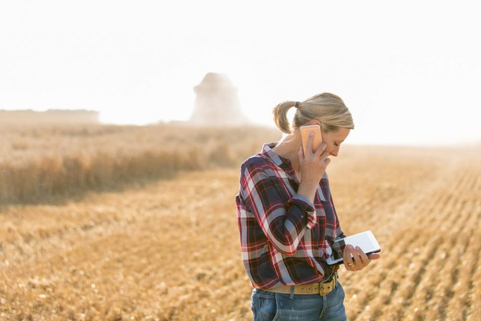 A female farmer using AgriSync on her phone to receive precision farming support
